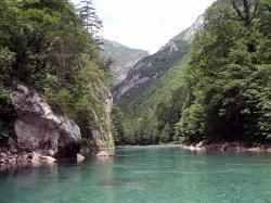 chernogor